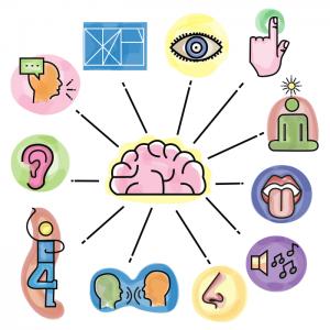 Multisensorisk undervisning